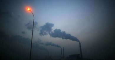 Carbon pricing schemes double since 2012 in climate fight: World Bank