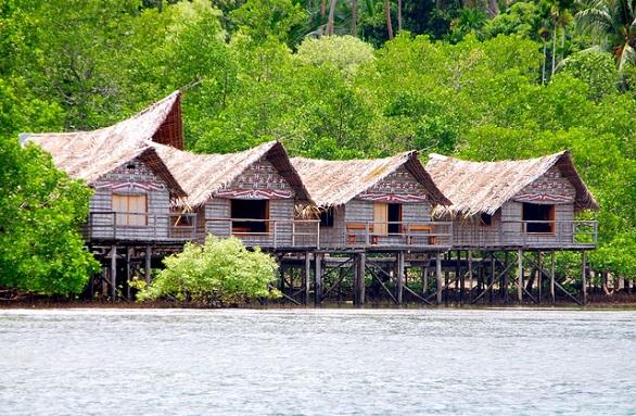 Nuli-Sapi-Papua-New-Guinea