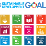 SDG's Should Be Everyone's Goal