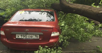Eleven killed in Moscow storm