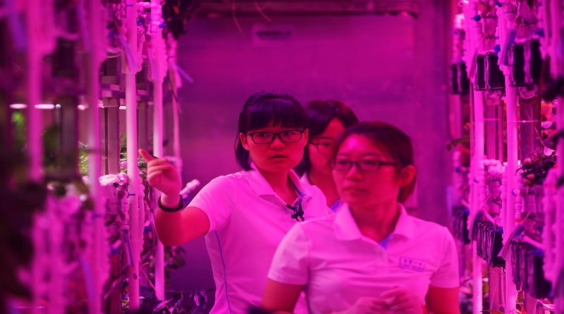 China tests self-sustaining space station in Beijing