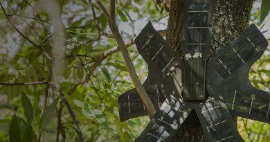 Smartphones used to combat illegal logging