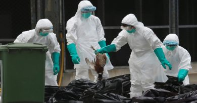 New H7N9 bird flu strain in China has pandemic potential: study