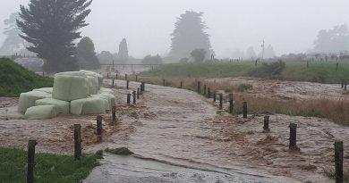 Former cyclone Gita traverses New Zealand, batters South Island